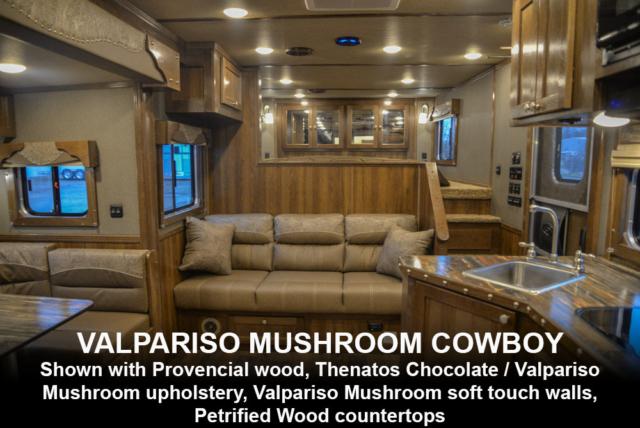 Valpariso Mushroom Cowboy Decor | SMC Laramie Edition